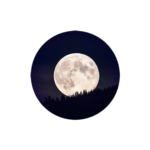LinkE1 - Moon Rise